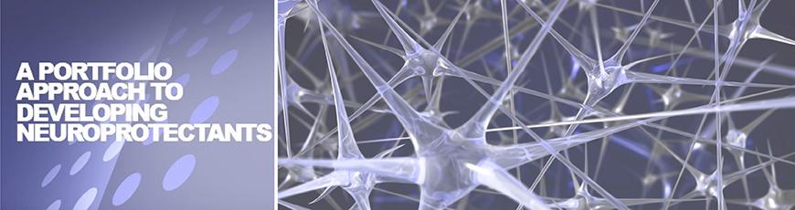 Neurodyn_slider_Web_Horiz